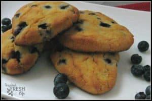 BlueberryScones8