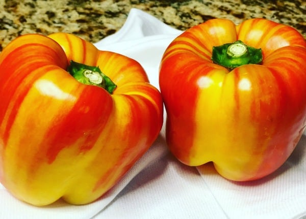 Red and yellow variegated bell peppers